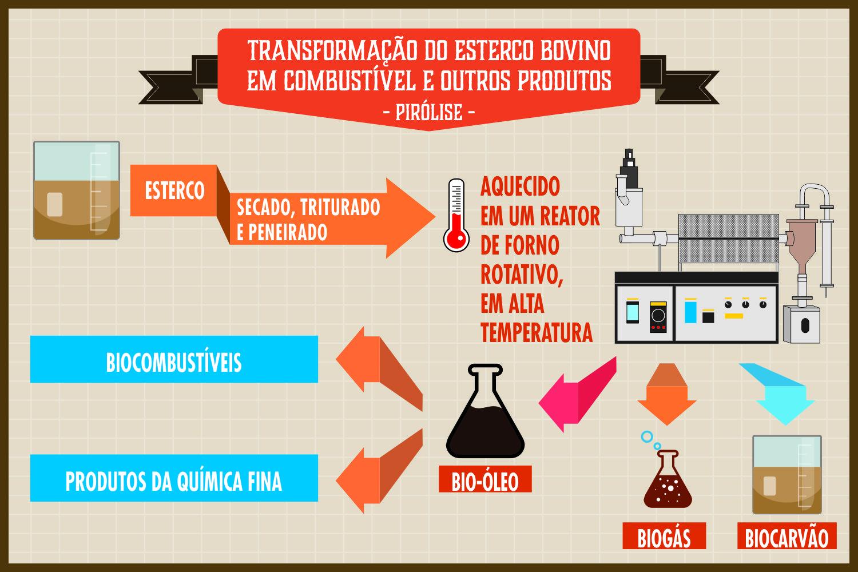 Infográfico: Marcilio Costa